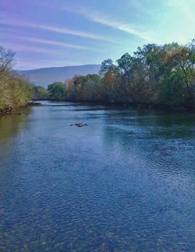 river view by drone looking upstream of the hiwassee river in TN